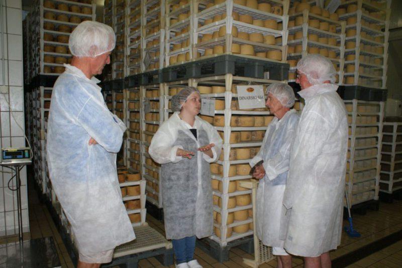 Bezoek aan de kaasfabriek Sirana Gligora op het eiland Pag