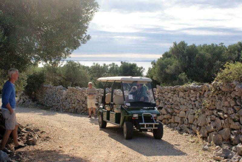 Met gids en golfkarretje kom je op de mooiste plaatsen in de olijfgaard