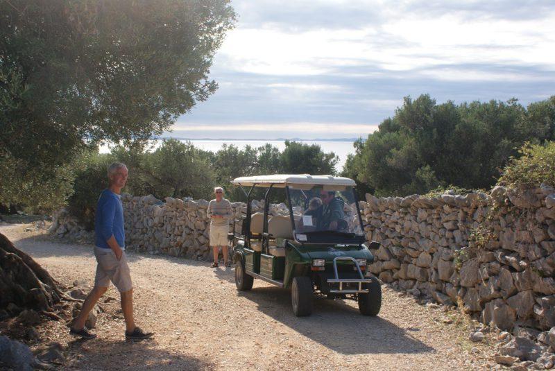 olijfgaarden-lun