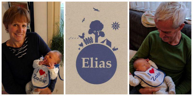 kleinzoon-Elias