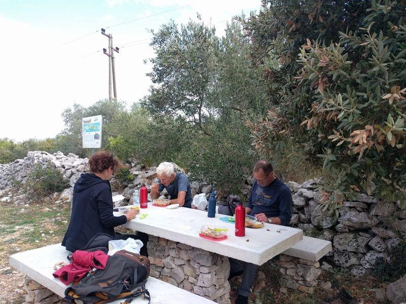 Pciknicken op het olijven eiland Ugljan