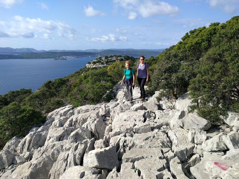 Top van het olijven eiland Ugljan