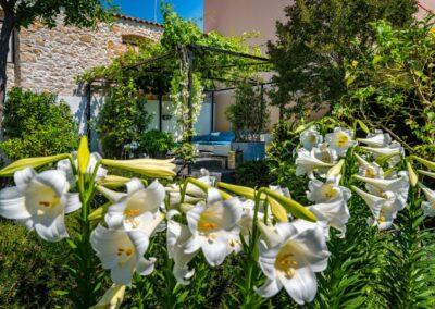 witte tuin met lelies B&B Zadar