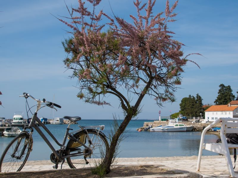 fietsen op eiland ugljan