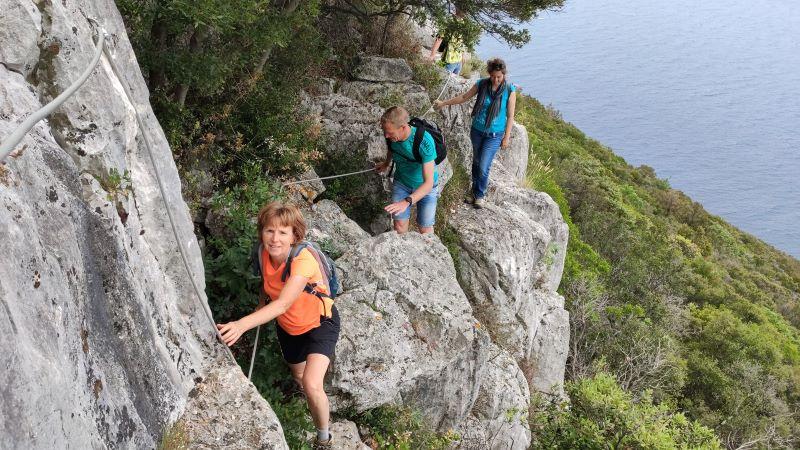 vlamingen langs de rotsen van Ugljan, Kroatië